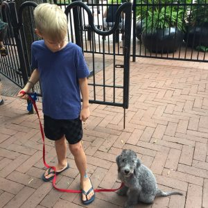 Puppy on Leash with Child